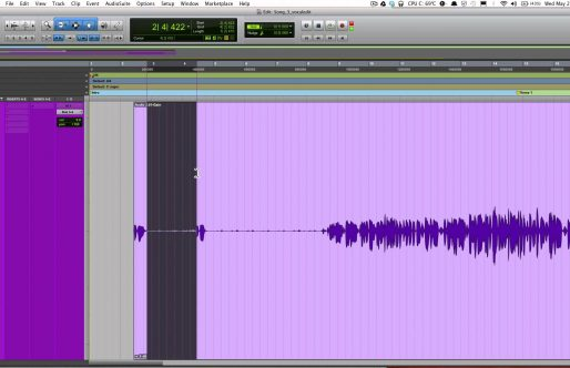 Cleaning and Editing Voiceover Process